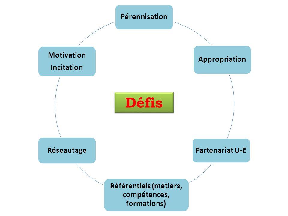 Pérennisation Appropriation Partenariat U-E Référentiels (métiers, compétences, formations) Réseautage Motivation Incitation Défis