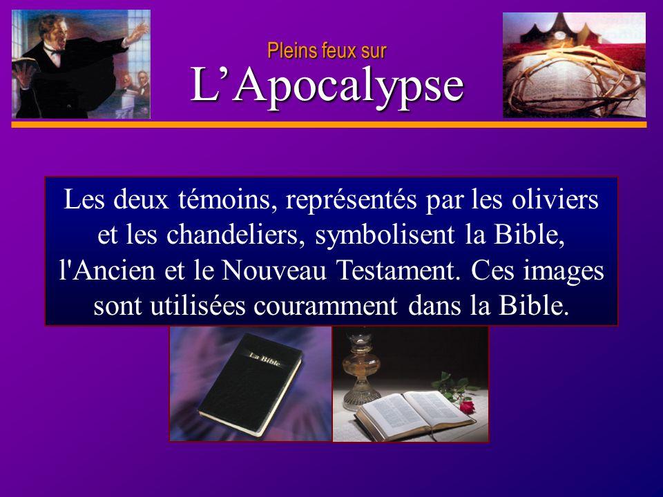 D anie l Pleins feux sur 16 LApocalypse Pleins feux sur Les deux témoins, représentés par les oliviers et les chandeliers, symbolisent la Bible, l'Anc