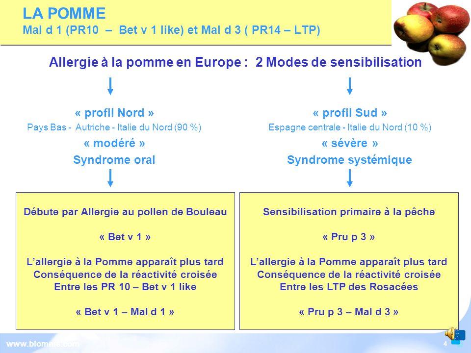 4 www.biomnis.com Débute par Allergie au pollen de Bouleau « Bet v 1 » Lallergie à la Pomme apparaît plus tard Conséquence de la réactivité croisée Entre les PR 10 – Bet v 1 like « Bet v 1 – Mal d 1 » « profil Nord » Pays Bas - Autriche - Italie du Nord (90 %) « modéré » Syndrome oral « profil Sud » Espagne centrale - Italie du Nord (10 %) « sévère » Syndrome systémique Sensibilisation primaire à la pêche « Pru p 3 » Lallergie à la Pomme apparaît plus tard Conséquence de la réactivité croisée Entre les LTP des Rosacées « Pru p 3 – Mal d 3 » LA POMME Mal d 1 (PR10 – Bet v 1 like) et Mal d 3 ( PR14 – LTP) Allergie à la pomme en Europe : 2 Modes de sensibilisation