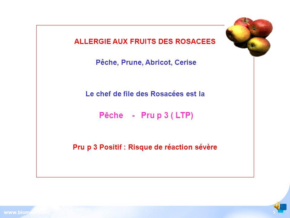 5 www.biomnis.com ALLERGIE AUX FRUITS DES ROSACEES Pêche, Prune, Abricot, Cerise Le chef de file des Rosacées est la Pêche - Pru p 3 ( LTP) Pru p 3 Positif : Risque de réaction sévère