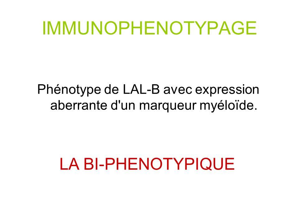 IMMUNOPHENOTYPAGE Phénotype de LAL-B avec expression aberrante d un marqueur myéloïde.