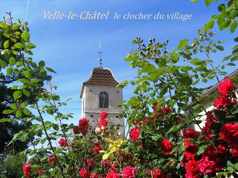 Bucey-les-Traves la Saône,. le coin des pécheurs