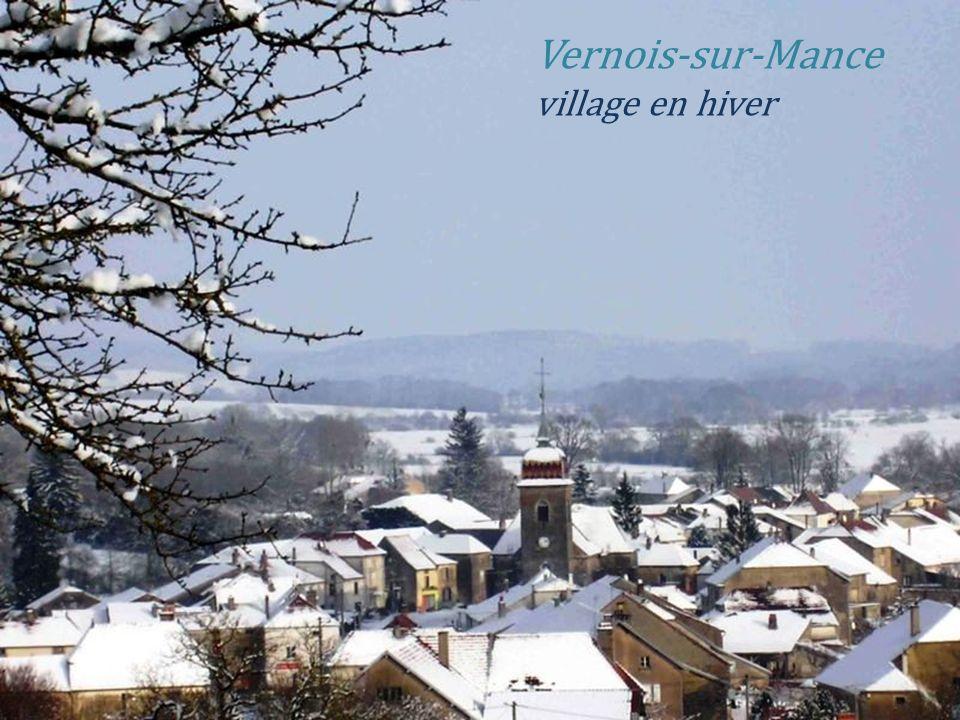 Montigny-lès-Cherlieu vue générale