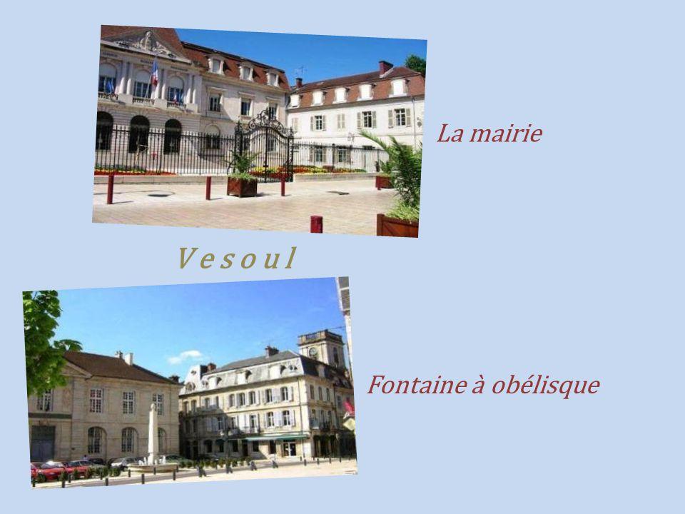 Vy-lès-Rupt fontaine du chêne