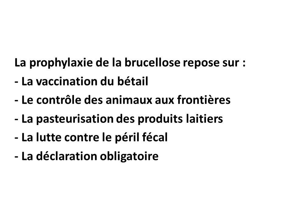 La prophylaxie de la brucellose repose sur : - La vaccination du bétail - Le contrôle des animaux aux frontières - La pasteurisation des produits lait