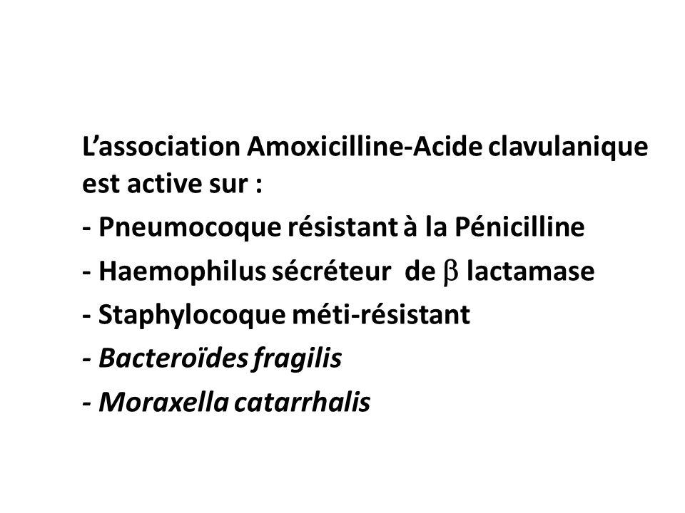 Lassociation Amoxicilline-Acide clavulanique est active sur : - Pneumocoque résistant à la Pénicilline - Haemophilus sécréteur de lactamase - Staphylo