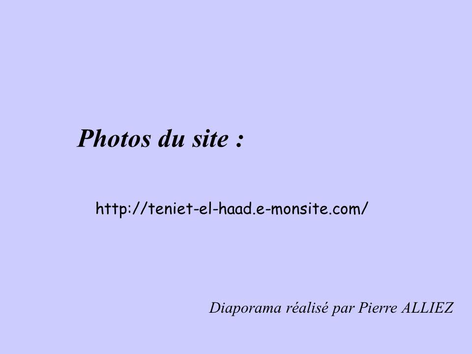 Jean MONTALDO Fils de René MOTALDO Né le 06 septembre 1941 à Teniet-El-Haâd.