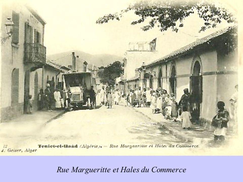 http://teniet-el-haad.e-monsite.com/ Photos du site : Diaporama réalisé par Pierre ALLIEZ
