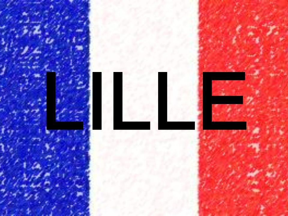 La situation géographique Lille est située dans le nord de la France, près de Belgique, cest la plus grande ville dans le nord.