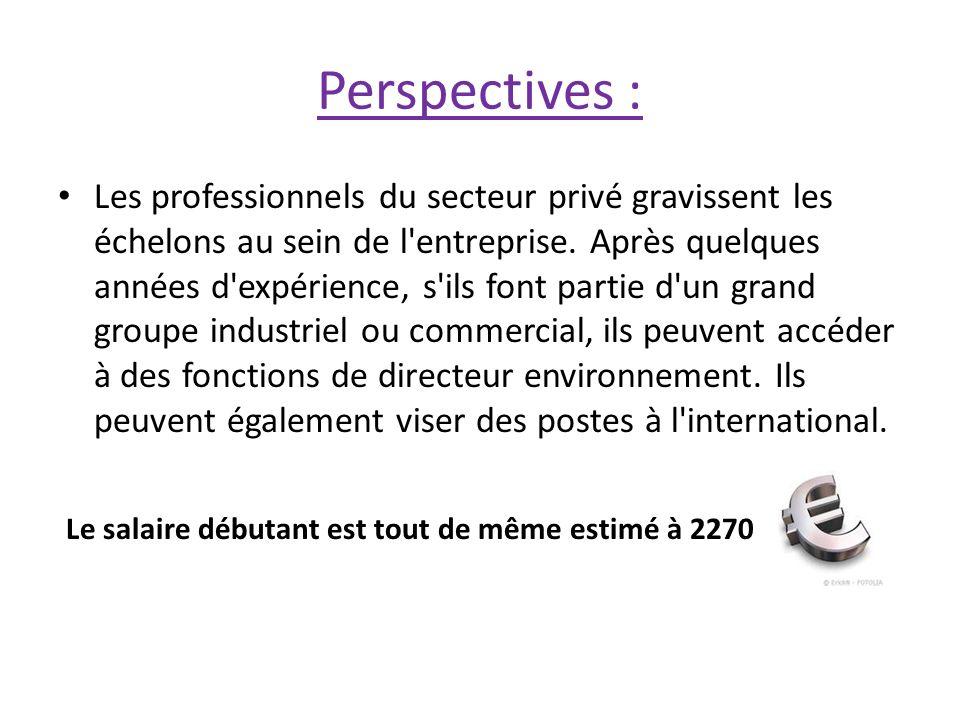 Perspectives : Les professionnels du secteur privé gravissent les échelons au sein de l'entreprise. Après quelques années d'expérience, s'ils font par
