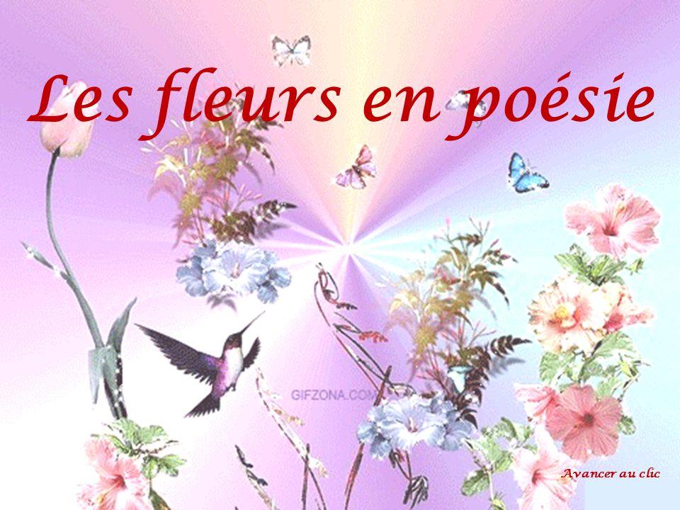 Les fleurs en poésie Avancer au clic