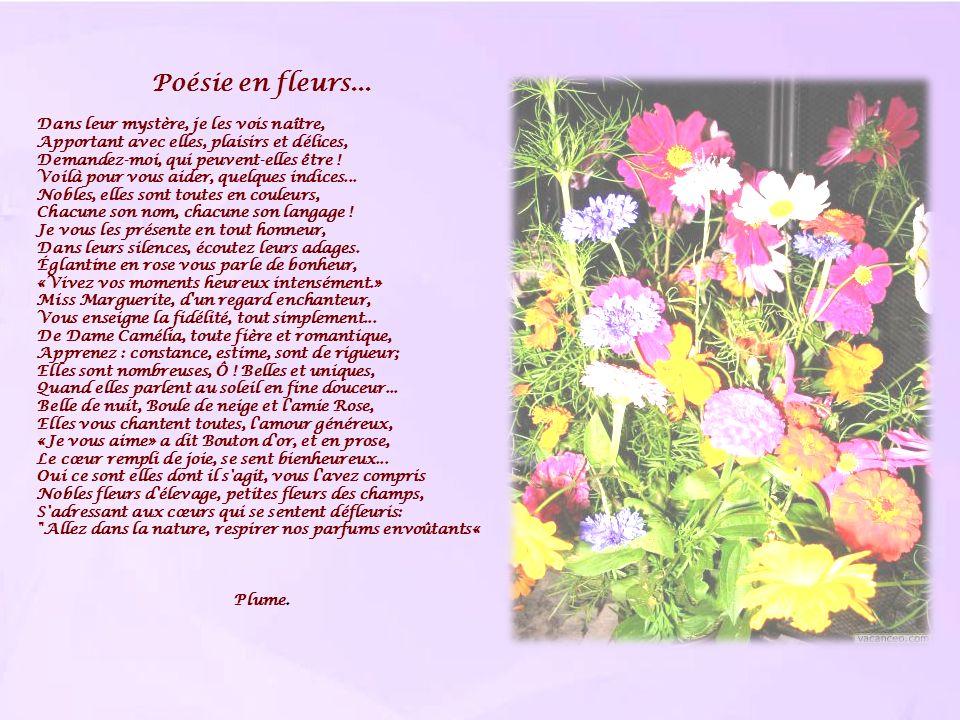 Poésie en fleurs... Dans leur mystère, je les vois naître, Apportant avec elles, plaisirs et délices, Demandez-moi, qui peuvent-elles être ! Voilà pou