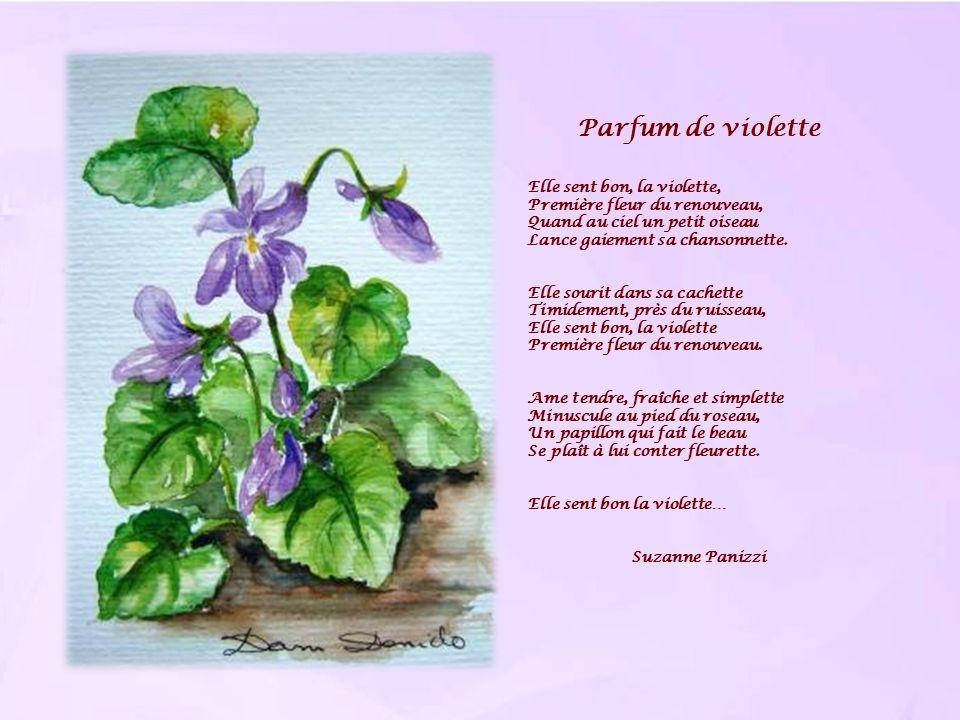 Parfum de violette Elle sent bon, la violette, Première fleur du renouveau, Quand au ciel un petit oiseau Lance gaiement sa chansonnette. Elle sourit