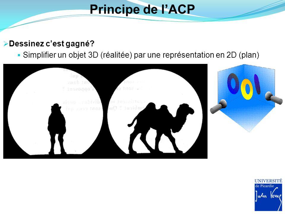 Principe de lACP Dessinez cest gagné? Simplifier un objet 3D (réalitée) par une représentation en 2D (plan)