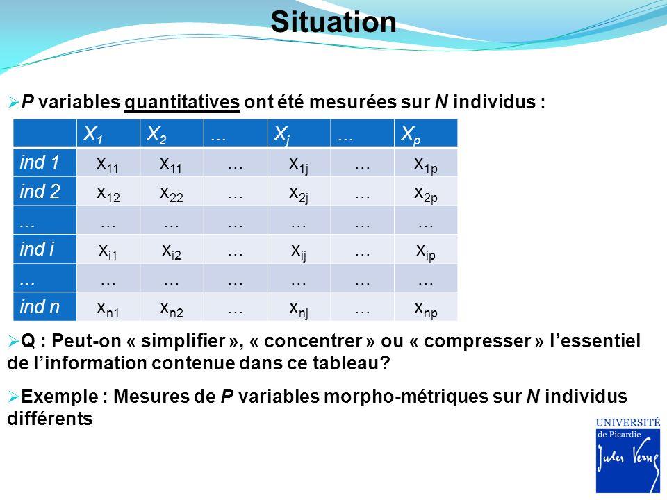 Situation P variables quantitatives ont été mesurées sur N individus : X1X1 X2X2...XjXj XpXp ind 1x 11...x 1j...x 1p ind 2x 12 x 22...x 2j...x 2p... i