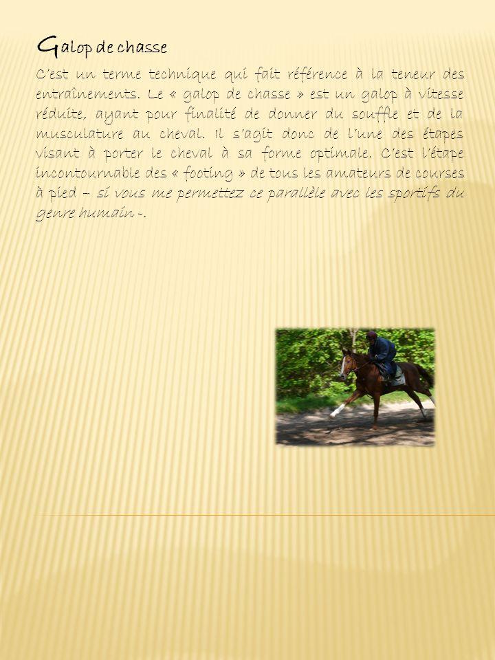 C ourses (suite) Handicaps (voir page « Handicap ») : dans ces courses les chances des chevaux sont sensées être égales, un handicapeur étant chargé de les égaliser en attribuant des poids à porter ou des distances à parcourir différents selon le niveau des chevaux, les meilleurs sont alourdis ou rallongés, les moins bons sont allégés ou raccourcis.