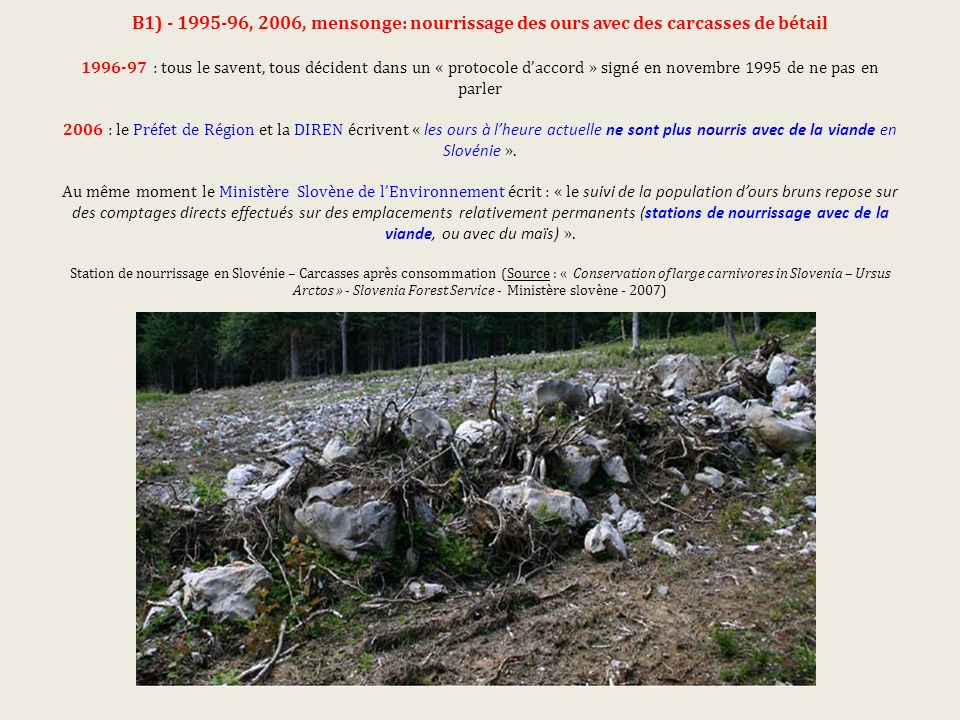 B1) - 1995-96, 2006, mensonge: nourrissage des ours avec des carcasses de bétail 1996-97 : tous le savent, tous décident dans un « protocole daccord » signé en novembre 1995 de ne pas en parler 2006 : le Préfet de Région et la DIREN écrivent « les ours à lheure actuelle ne sont plus nourris avec de la viande en Slovénie ».