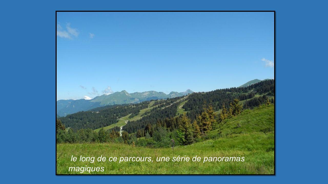Nous voici, sur le sentier des Crêtes de la Rosta, après une heure de marche en dénivelé, la récompense : le Mont Blanc 3éme circuit