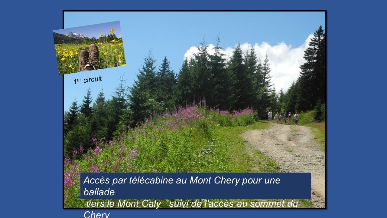 Accès par télécabine au Mont Chery pour une ballade vers le Mont Caly suivi de laccès au sommet du Chery 1 er circuit