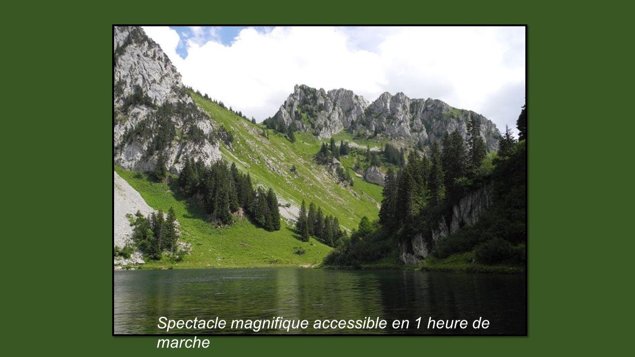 Reflets dans le lac Arvouin