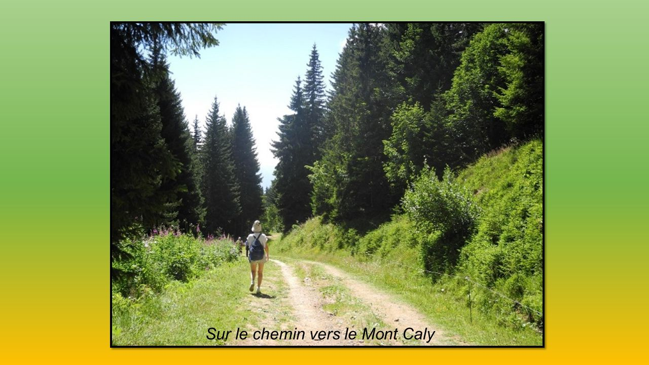 Sur le chemin vers le Mont Caly