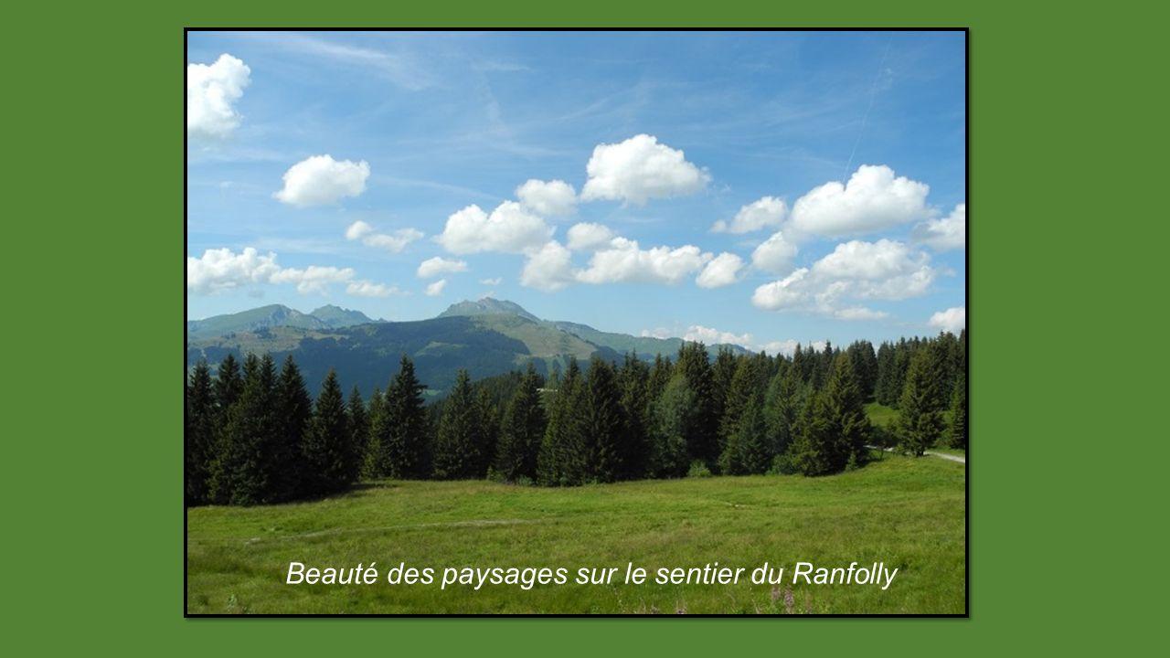Une nouvelle ballade au-dessus de la localité de Chapelle dAbondance, en direction du lac Arvouin 4éme circuit
