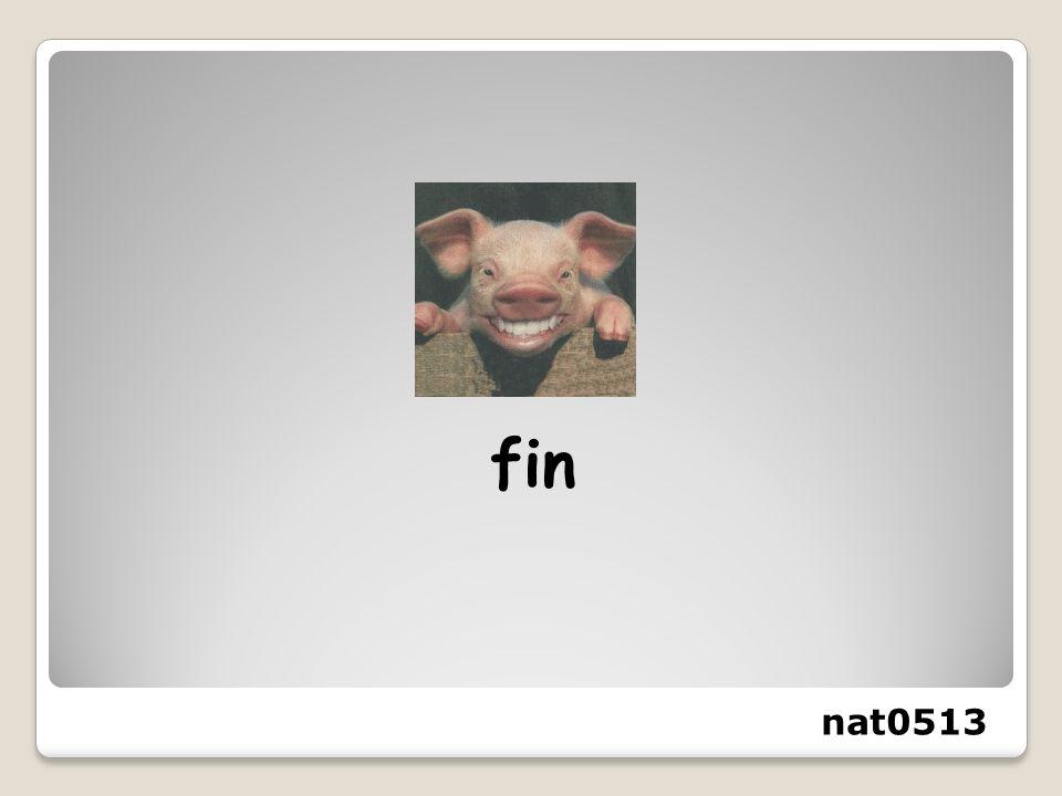 fin nat0513