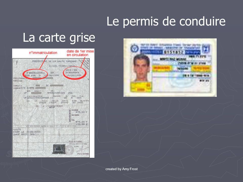 Le permis de conduire La carte grise created by Amy Frost