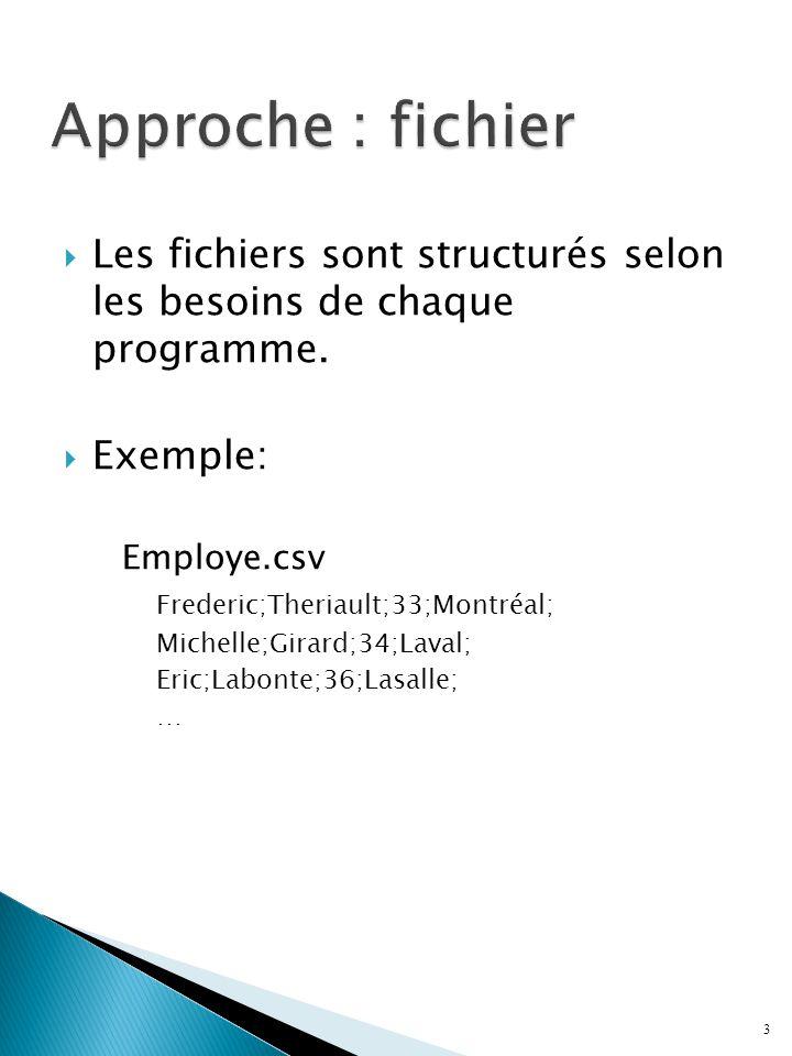 3 Les fichiers sont structurés selon les besoins de chaque programme. Exemple: Employe.csv Frederic;Theriault;33;Montréal; Michelle;Girard;34;Laval; E