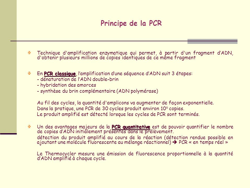 PCR classique versus PCR en temps réel