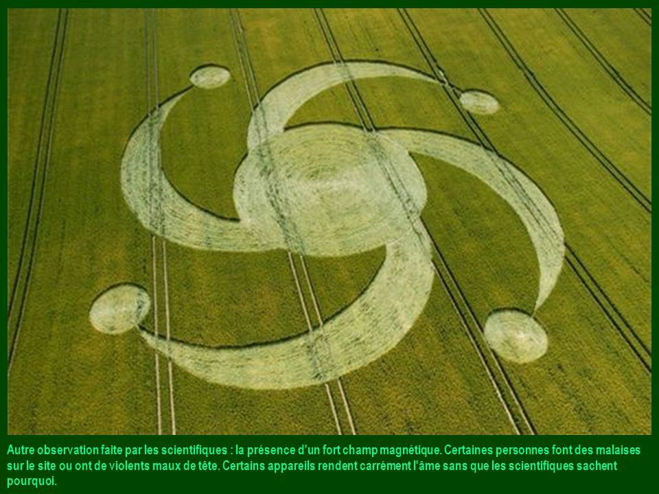 Les scientifiques analysent certains sites. Ils constatent que les plants de céréales sont modifiés et déshydratés à cause d'une élévation brutale de
