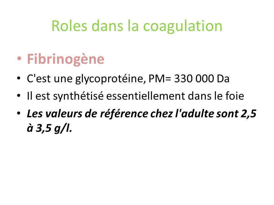Roles dans la coagulation Fibrinogène C est une glycoprotéine, PM= 330 000 Da Il est synthétisé essentiellement dans le foie Les valeurs de référence chez l adulte sont 2,5 à 3,5 g/l.