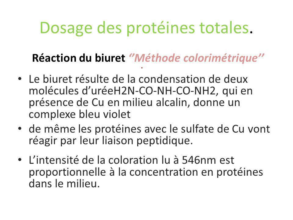Dosage des protéines totales. Réaction du biuret Méthode colorimétrique Le biuret résulte de la condensation de deux molécules duréeH2N-CO-NH-CO-NH2,