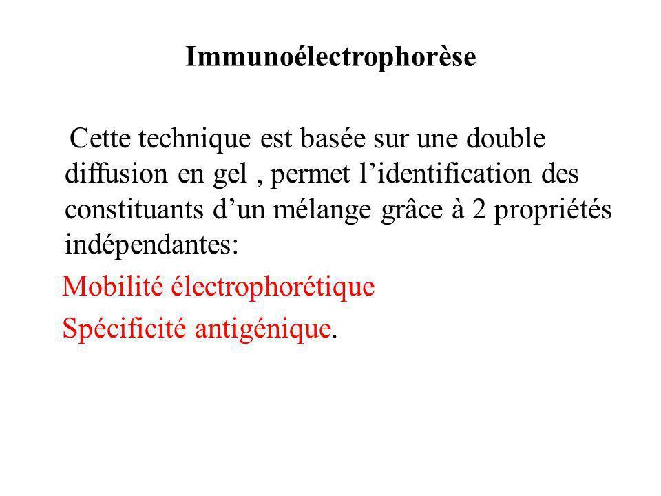 Immunoélectrophorèse Cette technique est basée sur une double diffusion en gel, permet lidentification des constituants dun mélange grâce à 2 propriétés indépendantes: Mobilité électrophorétique Spécificité antigénique.