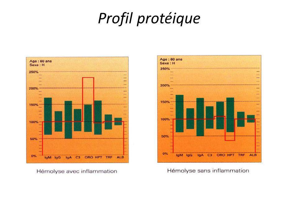 Profil protéique