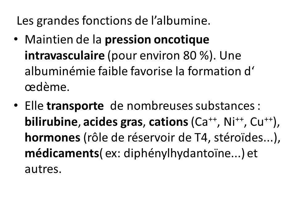 Les grandes fonctions de lalbumine. Maintien de la pression oncotique intravasculaire (pour environ 80 %). Une albuminémie faible favorise la formatio