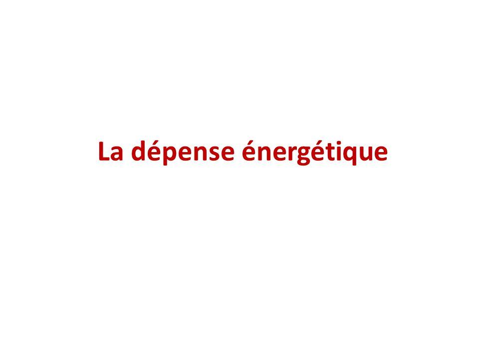 La dépense énergétique
