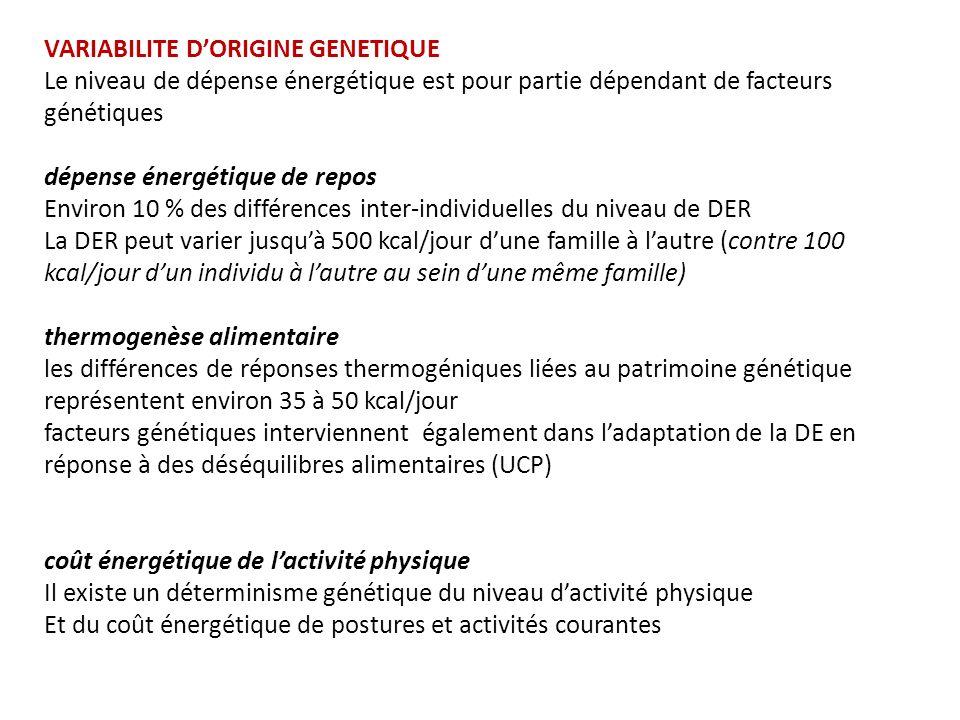 VARIABILITE DORIGINE GENETIQUE Le niveau de dépense énergétique est pour partie dépendant de facteurs génétiques dépense énergétique de repos Environ 10 % des différences inter-individuelles du niveau de DER La DER peut varier jusquà 500 kcal/jour dune famille à lautre (contre 100 kcal/jour dun individu à lautre au sein dune même famille) thermogenèse alimentaire les différences de réponses thermogéniques liées au patrimoine génétique représentent environ 35 à 50 kcal/jour facteurs génétiques interviennent également dans ladaptation de la DE en réponse à des déséquilibres alimentaires (UCP) coût énergétique de lactivité physique Il existe un déterminisme génétique du niveau dactivité physique Et du coût énergétique de postures et activités courantes