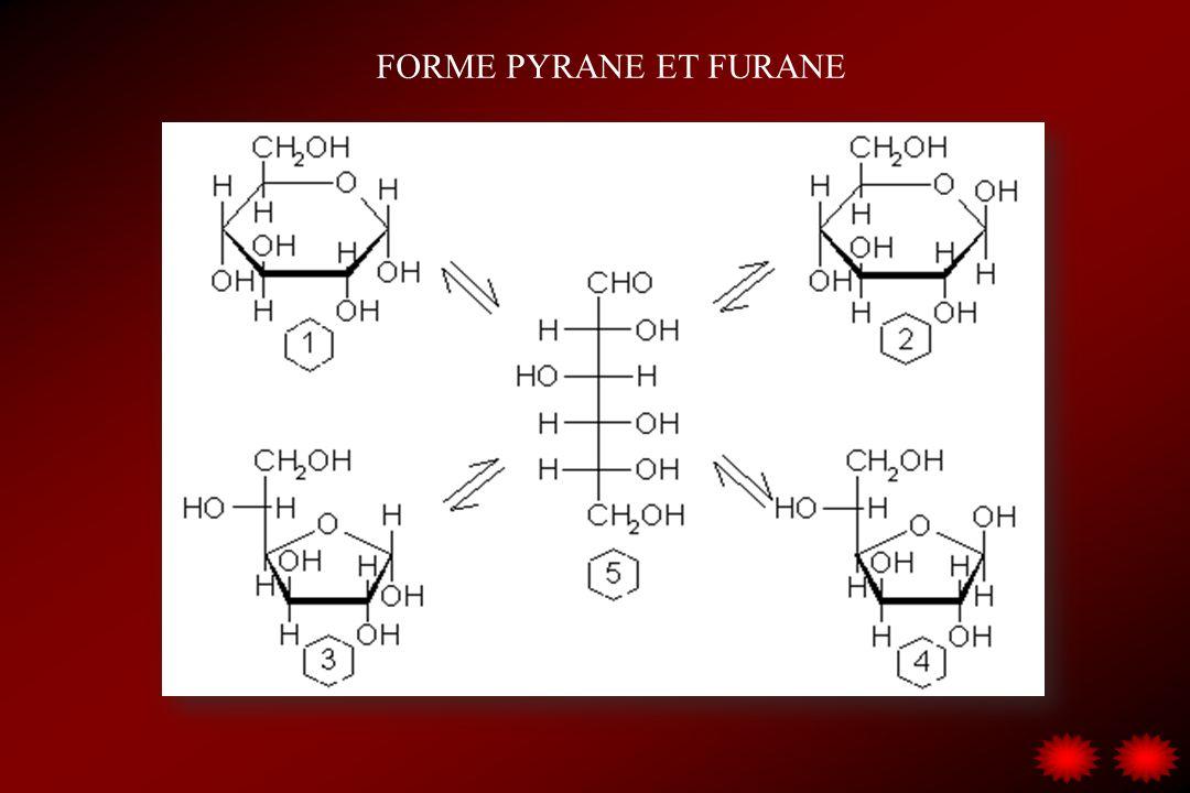 FORME PYRANE ET FURANE