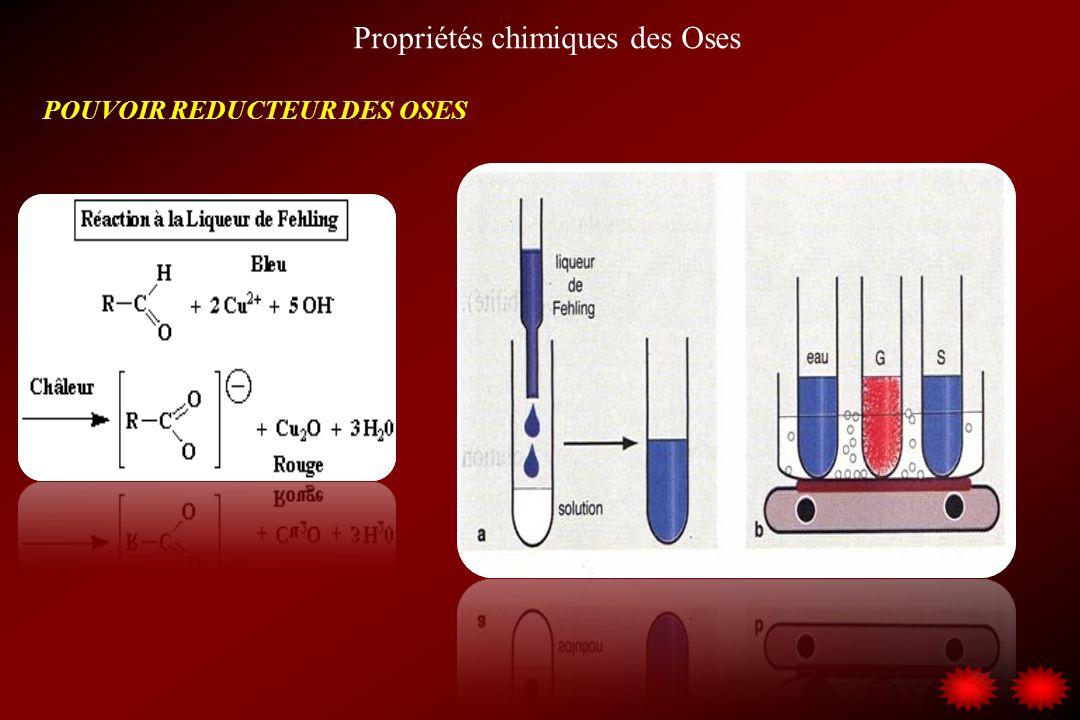 Propriétés chimiques des Oses POUVOIR REDUCTEUR DES OSES