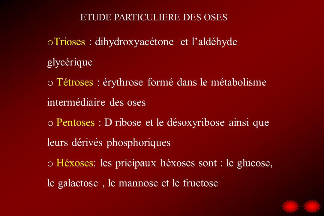 ETUDE PARTICULIERE DES OSES o Trioses : dihydroxyacétone et laldéhyde glycérique o Tétroses : érythrose formé dans le métabolisme intermédiaire des os