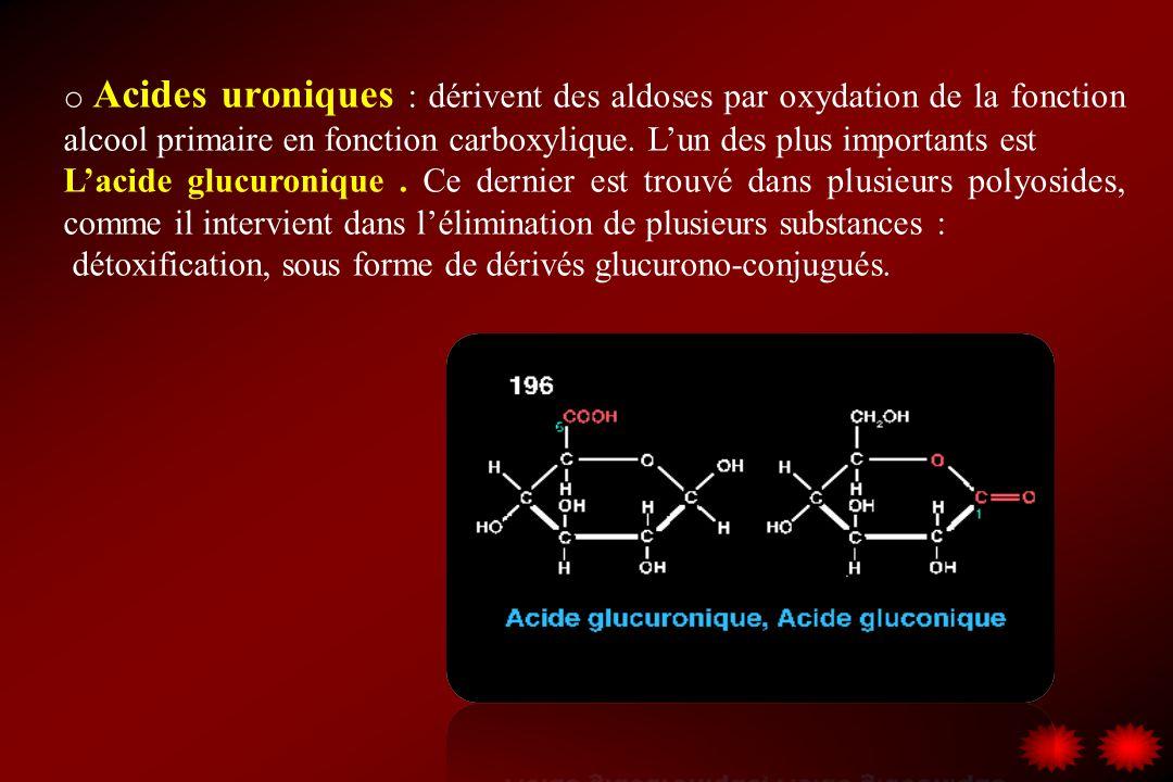 o Acides uroniques : dérivent des aldoses par oxydation de la fonction alcool primaire en fonction carboxylique. Lun des plus importants est Lacide gl