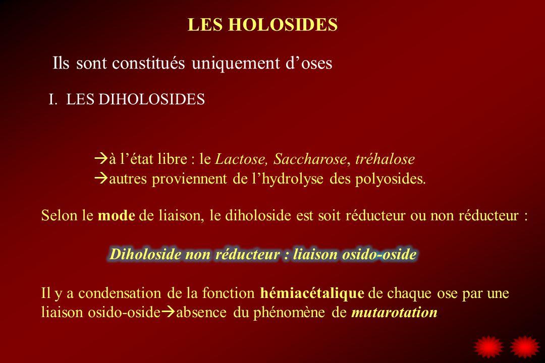 LES HOLOSIDES I. LES DIHOLOSIDES Ils sont constitués uniquement doses