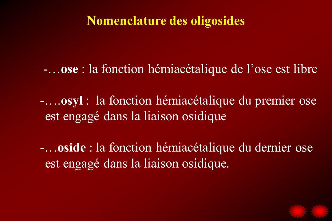 -…ose : la fonction hémiacétalique de lose est libre -….osyl : la fonction hémiacétalique du premier ose est engagé dans la liaison osidique -…oside :