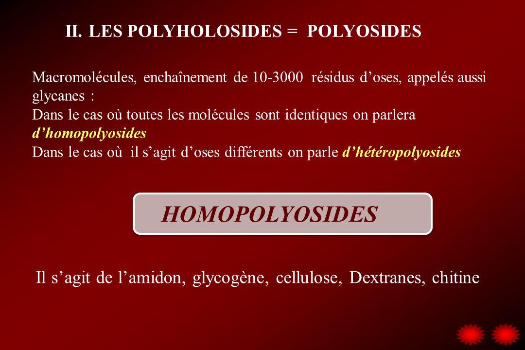 II. LES POLYHOLOSIDES = POLYOSIDES Macromolécules, enchaînement de 10-3000 résidus doses, appelés aussi glycanes : Dans le cas où toutes les molécules