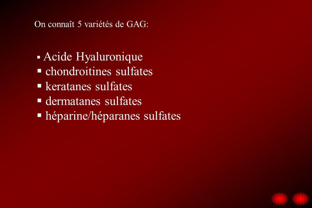 On connaît 5 variétés de GAG: Acide Hyaluronique chondroitines sulfates keratanes sulfates dermatanes sulfates héparine/héparanes sulfates
