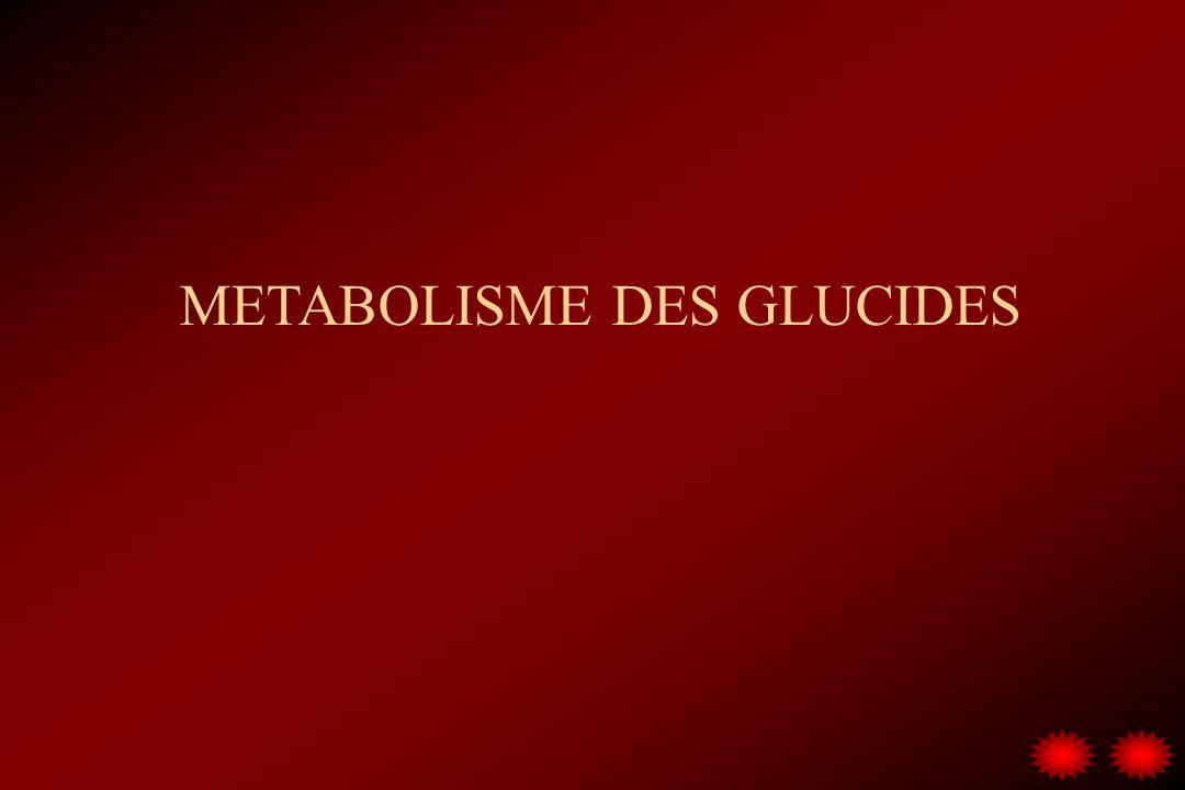 METABOLISME DES GLUCIDES