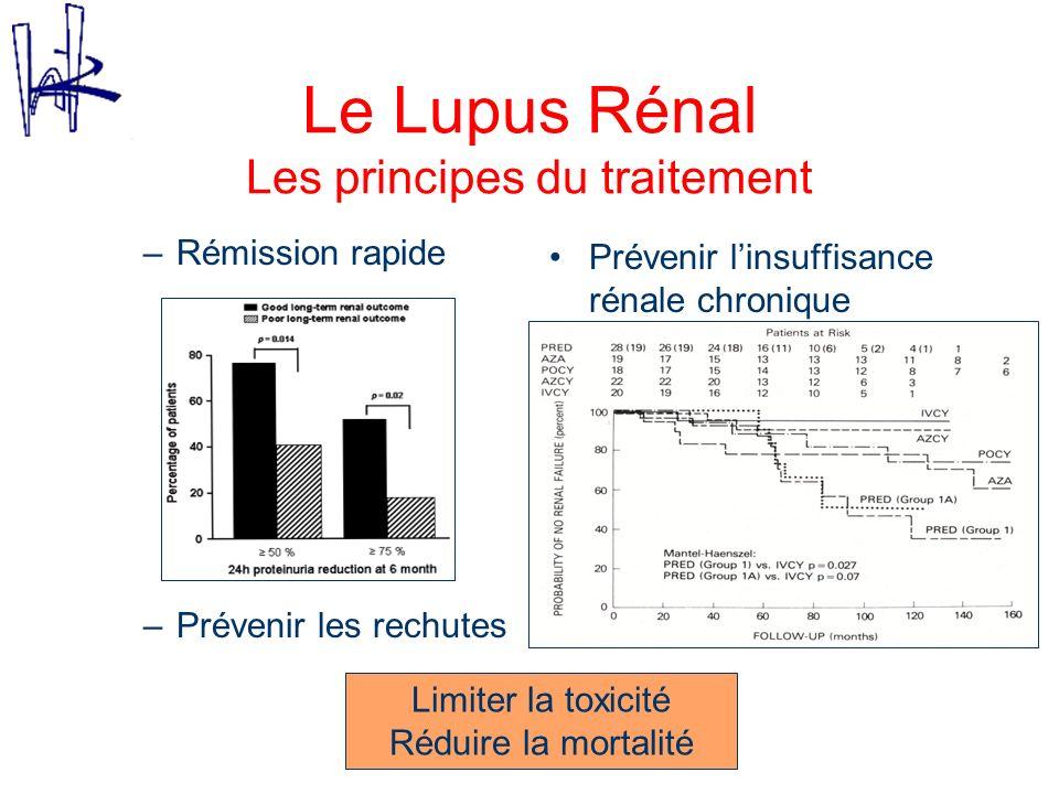 Le Lupus Rénal Evolution des schémas thérapeutiques Faire mieux que la corticothérapie Traitement dinduction : –Endoxan IV : NIH –Diminuer les doses : Eurolupus –Remplacer lEndoxan : MMF, azathioprine, Tacrolimus –Traitement plus ciblé : Rituximab .