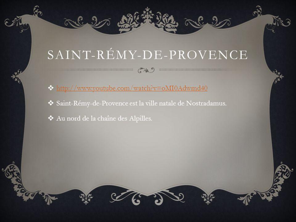 SAINT-RÉMY-DE-PROVENCE http://www.youtube.com/watch?v=oMI0Adwmd40 Saint-Rémy-de-Provence est la ville natale de Nostradamus.