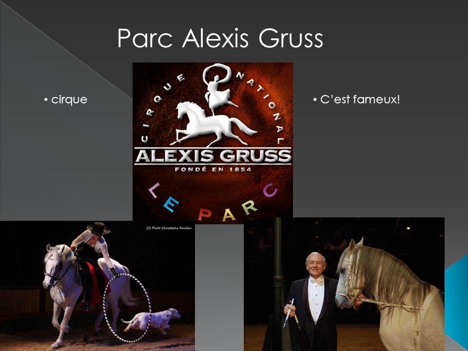 Parc Alexis Gruss cirque Cest fameux!